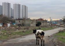 Tracce urbane di trasformazione immagine stock