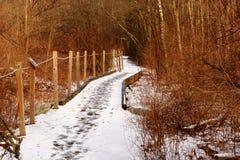 Traccia accessibile di handicap di Snowy per la gente alterata vista fotografie stock libere da diritti