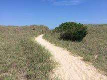 Traccia alla duna esterna del banco di sabbia fotografia stock