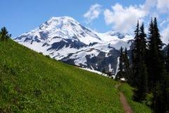 Traccia alla montagna Immagini Stock Libere da Diritti
