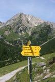 Traccia alpina Immagine Stock Libera da Diritti