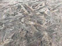 Traccia approssimativa del battistrada su terra o su argilla Immagini Stock