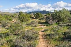 Traccia attraverso il deserto del Mojave Fotografie Stock Libere da Diritti