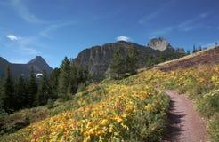 Traccia attraverso le montagne, ghiacciaio N P immagine stock libera da diritti