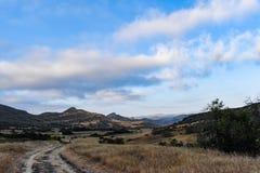 Traccia attraverso un campo dorato durante il tramonto fotografia stock