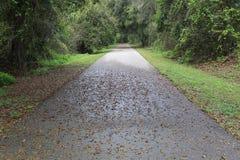 Traccia Autumn Early Morning della bici immagine stock