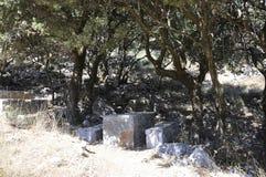 Traccia da scavare di Zeus in montagne di Dikti dall'isola di Creta della Grecia fotografie stock libere da diritti
