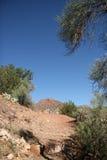 Traccia del deserto Fotografie Stock Libere da Diritti