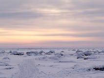 Traccia del ghiaccio Fotografie Stock