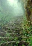 Traccia del Inca Fotografia Stock