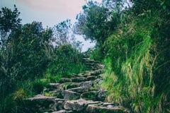 Traccia del Inca a Machu Picchu peru Il Sudamerica Nessuna gente Fotografia Stock