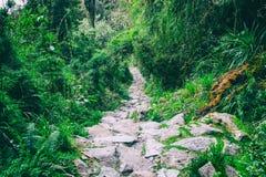 Traccia del Inca a Machu Picchu peru Il Sudamerica Nessuna gente Immagine Stock