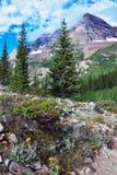 Traccia del lago crater Fotografia Stock
