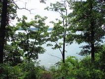 Traccia del lato del lago nel Missouri Immagini Stock