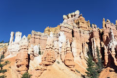 Traccia del Navajo in canyon di Bryce Fotografia Stock Libera da Diritti