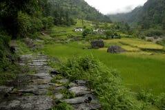 Traccia del santuario di Annapurna Fotografie Stock Libere da Diritti