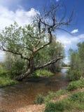 Traccia del sud dell'insenatura di Boulder fotografie stock libere da diritti