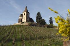 Traccia del vino che conduce ad una vecchia chiesa francese Immagini Stock