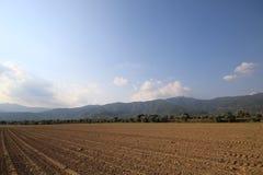 Traccia dell'aratro agricolo Fotografia Stock