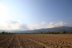 Traccia dell'aratro agricolo Fotografie Stock
