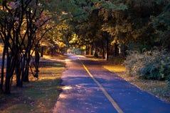 Traccia della bici del parco naturale alla notte Immagini Stock