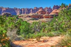 Traccia della collina dell'elefante Distretto degli aghi del parco nazionale di Canyonlands nell'Utah Immagini Stock Libere da Diritti