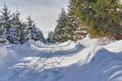 Traccia della neve Immagini Stock Libere da Diritti