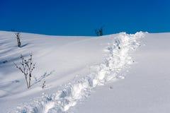 Traccia della neve Immagine Stock