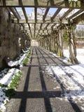 Traccia della pergola nella neve Immagine Stock
