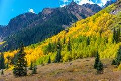 Traccia delle sorgenti di acqua calda di enigma del fogliame di caduta di Colorado immagine stock libera da diritti