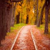 Traccia di autunno Fotografie Stock