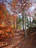 Traccia di autunno Immagini Stock Libere da Diritti