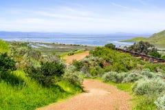 Traccia di camminata alla riserva di Don Edwards, San Francisco Bay ed il ponte di Dumbarton visibile nei precedenti, Fremont, immagine stock libera da diritti