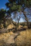 Traccia di camminata in canyon di California Immagini Stock Libere da Diritti