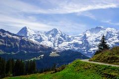 Traccia di camminata nelle alpi svizzere Fotografie Stock Libere da Diritti