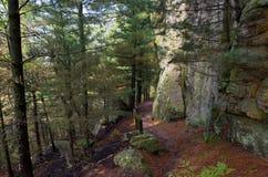 Traccia di escursione attraverso il monticello del castello fotografie stock libere da diritti