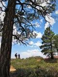 Traccia di escursione in Bryce Canyon Fotografia Stock