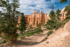 Traccia di escursione a Bryce Canyon National Park, Utah, U.S.A. Immagini Stock