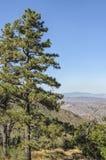Traccia di escursione Cleveland National Forest California Immagini Stock Libere da Diritti