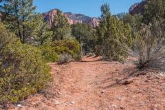 Traccia di escursione del deserto con le scogliere rosse Fotografie Stock Libere da Diritti