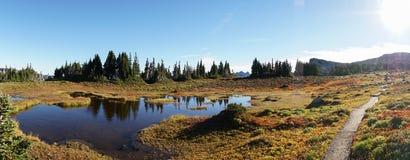 Traccia di escursione del paese delle meraviglie che circumnaviga il monte Rainier vicino a Seattle, U.S.A. fotografie stock