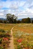 Traccia di escursione della California Fotografie Stock Libere da Diritti