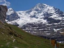 Traccia di escursione della montagna fotografie stock