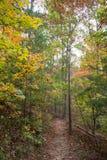 traccia di escursione di autunno Fotografia Stock