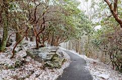 Traccia di escursione di inverno Immagine Stock