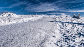 Traccia di escursione di inverno con i piccoli alberi e cielo blu con le nuvole Fotografia Stock Libera da Diritti