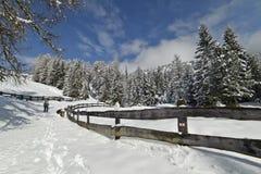 Traccia di escursione di inverno, dopo precipitazioni nevose Immagini Stock Libere da Diritti