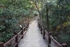 Traccia di escursione - Hong Kong Fotografia Stock