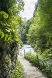 Traccia di escursione lungo il fiume della montagna su sfondo naturale fotografia stock