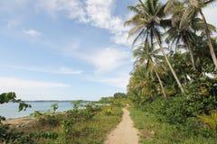 Traccia di escursione lungo la spiaggia immagini stock